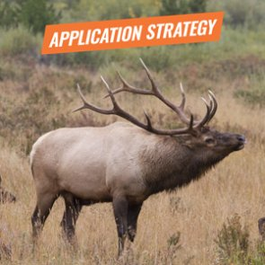 APPLICATION STRATEGY 2018: Idaho Elk and Antelope