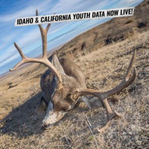 INSIDER Update: Idaho and California Youth Hunting Information Now Live!
