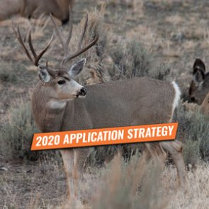 APPLICATION STRATEGY 2020: Idaho Elk, Deer, and Antelope