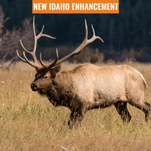 INSIDER Update: Idaho elk zones added