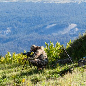 Is bowhunting as difficult as we think it is?