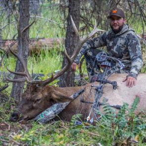 An elk hunting season to remember