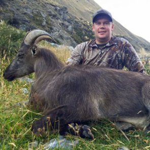 High mountain tahr hunt in New Zealand