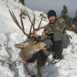 The power of cheese, crackers and rutting mule deer