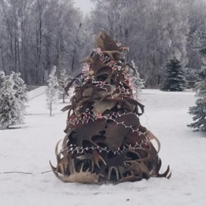 The 20 best shed antler Christmas trees