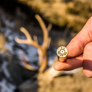 7 things you didn't know about ammo