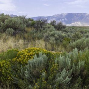 Legislation could improve access to public lands through digital mapping