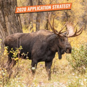 APPLICATION STRATEGY 2020: Utah Sheep, Moose, Goat, Bison