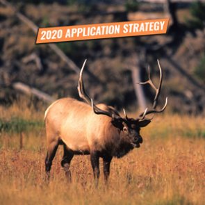 APPLICATION STRATEGY 2020: Montana Elk