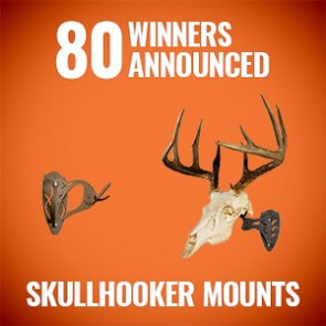 80 people just won Skull Hooker mounts