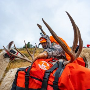 Wyoming Backcountry Mule Deer Hunt Video Series With Randy Newberg