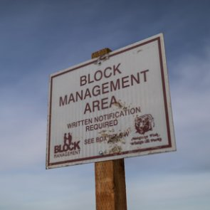 How to utilize Montana's Block Management Program for hunting access