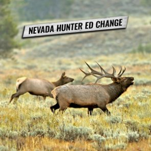 Online hunter education course now accepted in Nevada for those over 11 years old