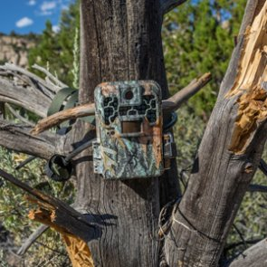 Nevada's new for 2018 seasonal trail camera law