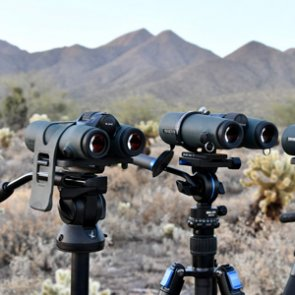 A deep look at the new Swarovski 8x42 NL Pure binocular