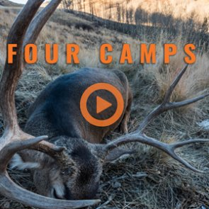 FOUR CAMPS (trailer)