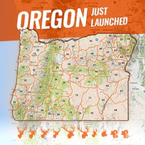 INSIDER update: Oregon is now live