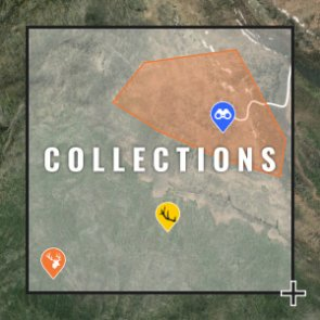Organize your hunts with Collections