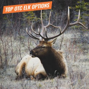 In-depth look at some of the top OTC elk hunts in the West