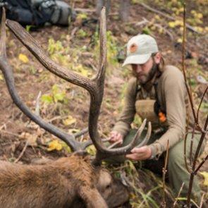 Overview of Colorado's elk hunting opportunities