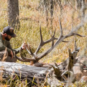 Planning your 2019 archery elk hunt by using the moon and equinox