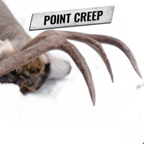 Point Creep — What is it and learn how it could impact you