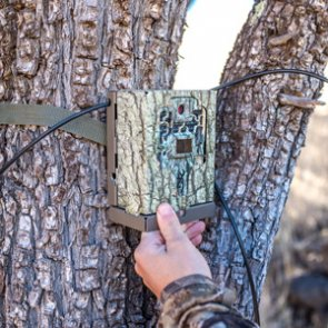 Update on potential Arizona trail camera ban