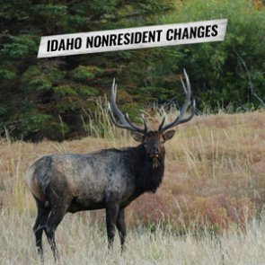 Idaho considers big changes to nonresident hunting