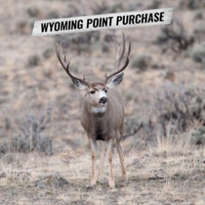 How to purchase Wyoming preference points