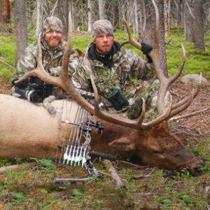 Colorado proof of sex elk harvest