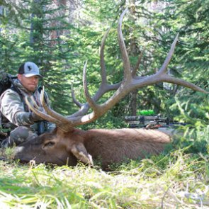 5 of the best early season elk hunting tactics before the rut
