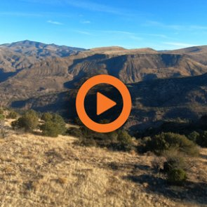 Arizona Elk Application Strategy — Q&A Video