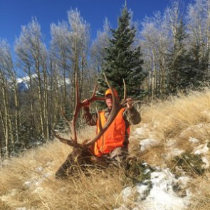 An elk hunt six years in the making