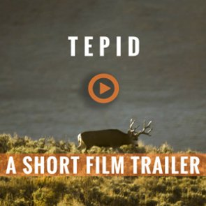 TEPID — A Colorado 3rd Season Mule Deer Hunt (Trailer)