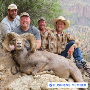 Potential archery World Record desert bighorn taken