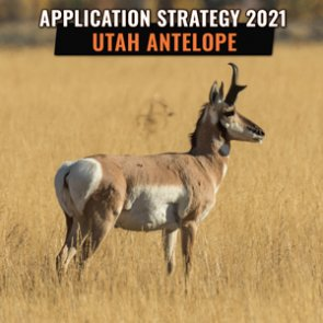 APPLICATION STRATEGY 2021: Utah Antelope