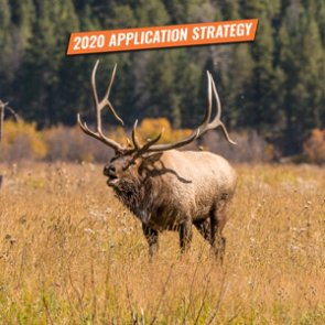 APPLICATION STRATEGY 2020: Utah Elk and Antelope