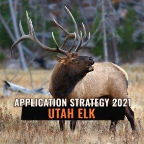 APPLICATION STRATEGY 2021: Utah Elk