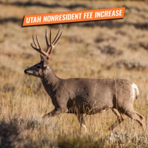 Utah increases nonresident hunting fees for 2020/2021