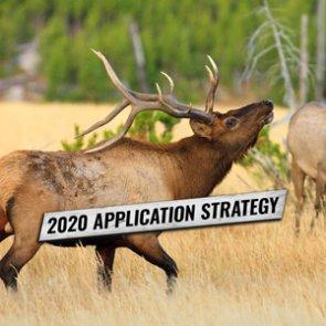 APPLICATION STRATEGY 2020: Washington Deer and Elk