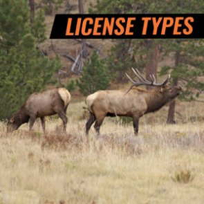 "What does ""license type"" mean in Wyoming?"