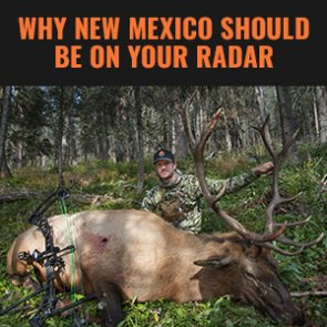 Finding opportunities to hunt in New Mexico this year