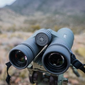 Why you need a pair of 12 power binoculars
