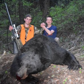 Bear hunting learning curves