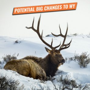 ALERT: New bill will severely impact nonresident hunters in WY