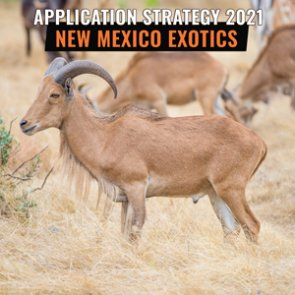 APPLICATION STRATEGY 2021: New Mexico Exotics