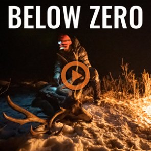 BELOW ZERO - A Colorado 3rd Season Mule Deer Hunt