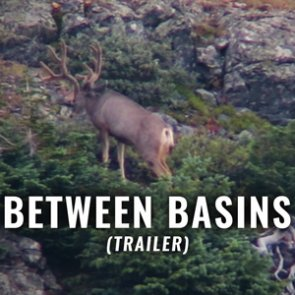 BETWEEN BASINS (Trailer)