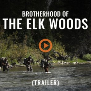 BROTHERHOOD OF THE ELK WOODS (Trailer)