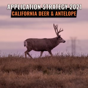 APPLICATION STRATEGY 2021: California Deer and Antelope